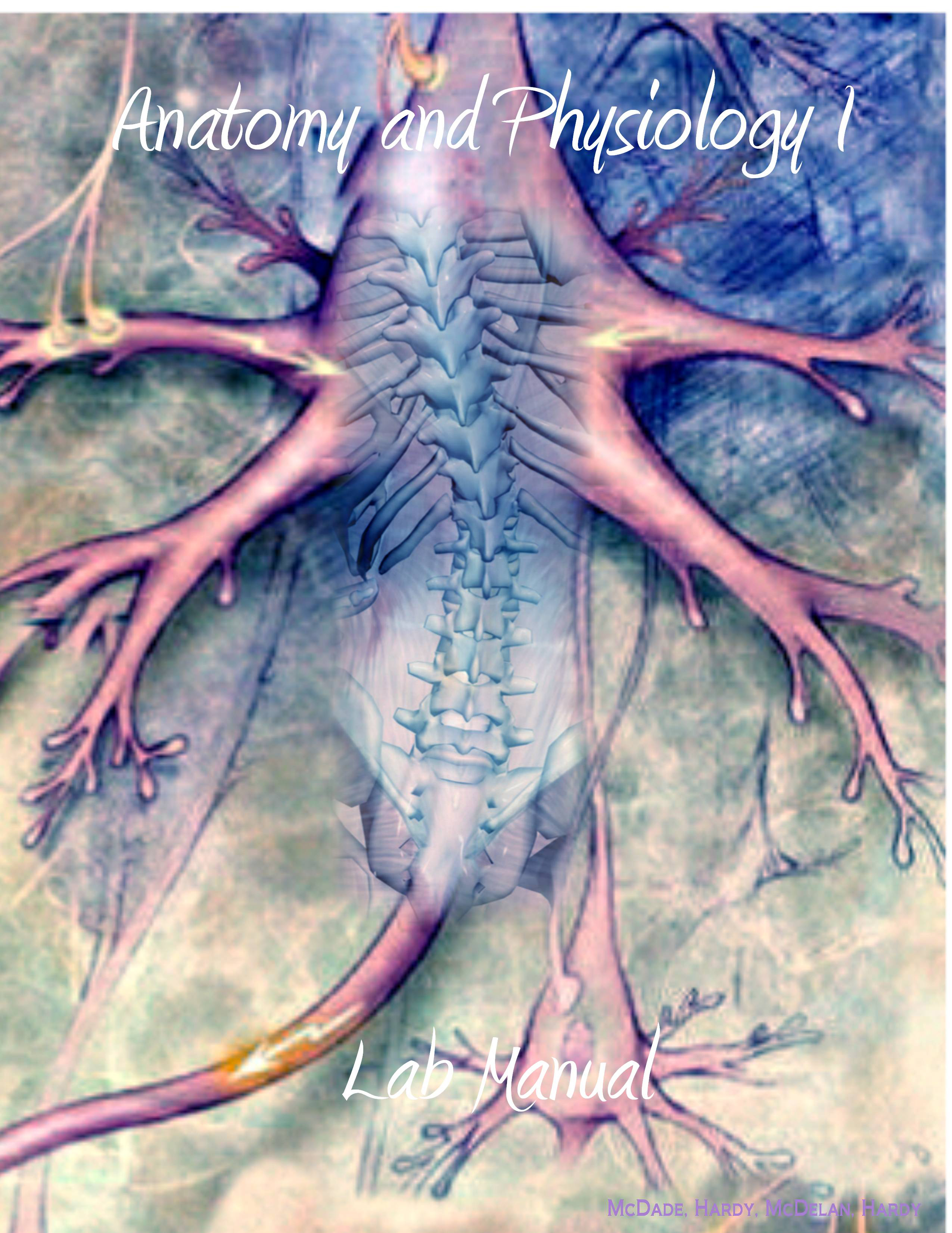 Anatomy and Physiology OpenStax Open Textbook - akross.info